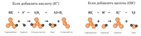 базовым компонентом жесткости воды являются карбонат-ионы